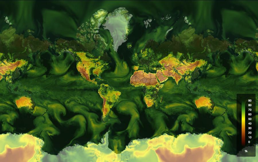 Global Relative Humidity