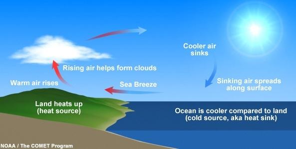 Sea Breeze Schematic