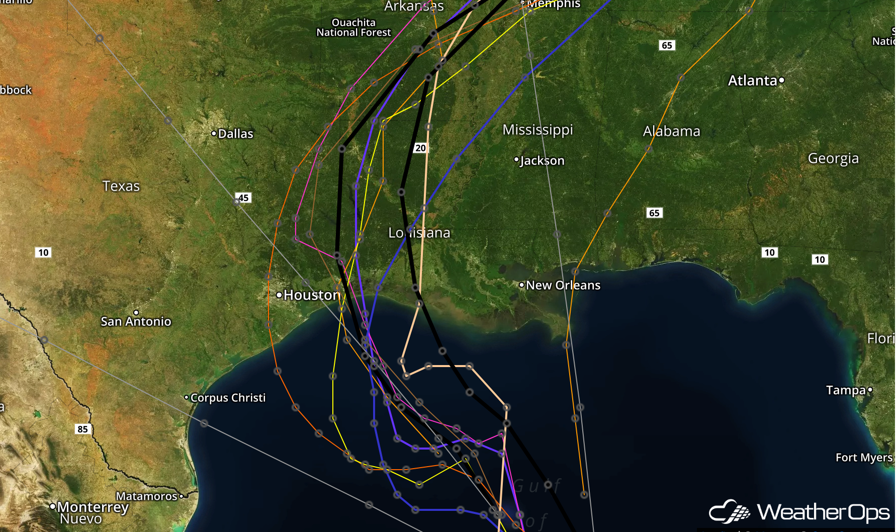 Forecast Model Tracks for TS Cindy, June 20, 2017