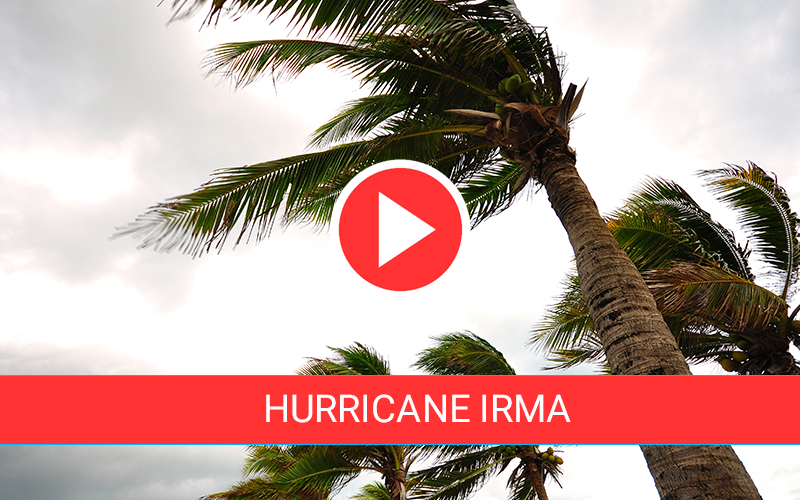 https://cdn2.hubspot.net/hubfs/604407/blog-files/irma-live-feed.png